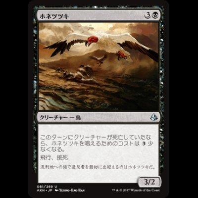 画像1: ホネツツキ/Bone Picker [AKH]