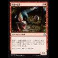 針歯の猛竜/Needletooth Raptor [RIX]